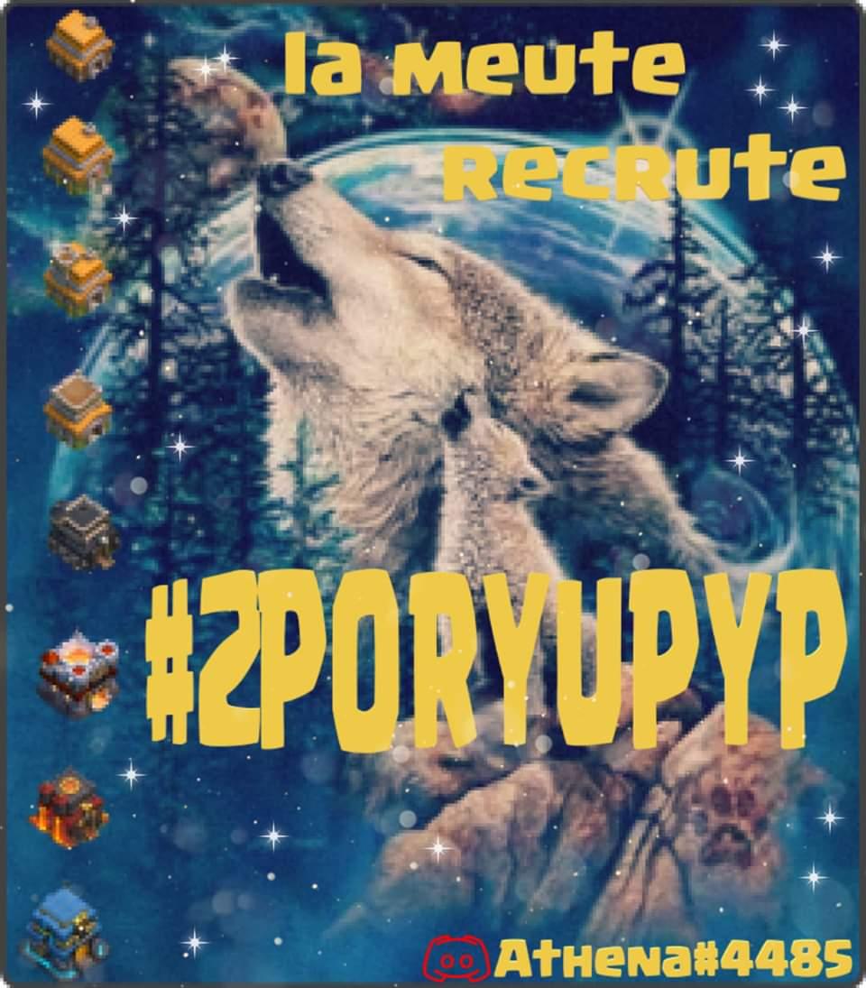 FB_IMG_1574098862077.jpg