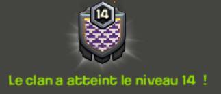 Niveau_14.JPG