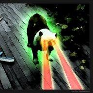 laser_dog